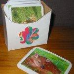 boitescartes-004-150x150 dans Aimer et découvrir la nature