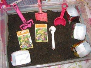 Jardinage en intérieur dans Aimer et découvrir la nature 8mai12plantationfelrus-001-300x225