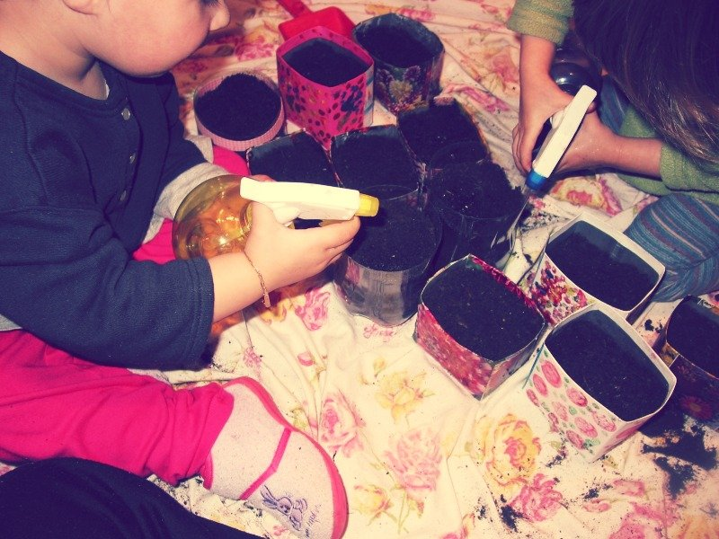 Jardinage en int rieur croquelavieenrose for Jardinage interieur