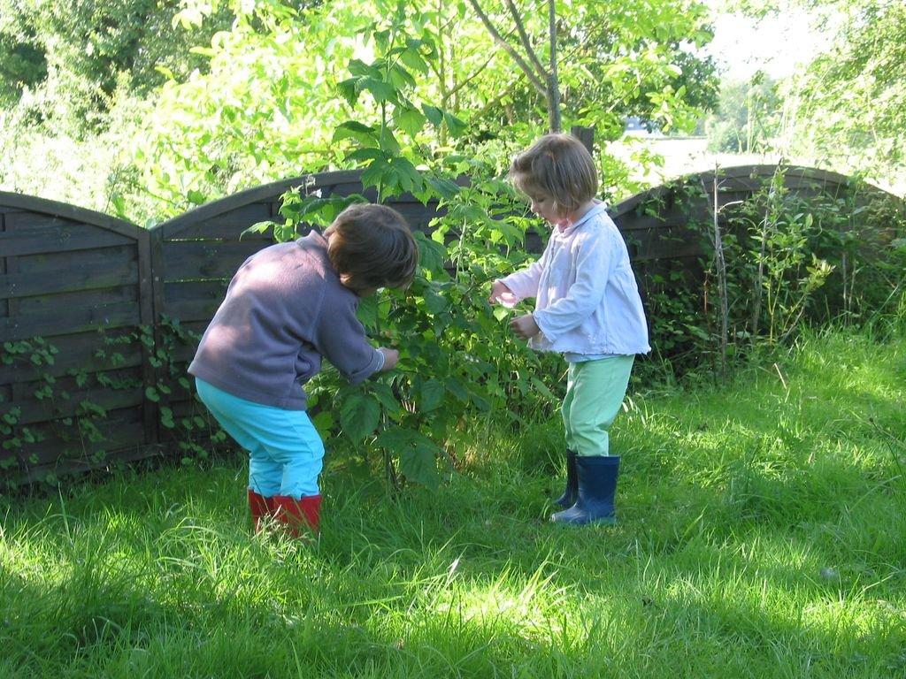 Au fond du jardin croquelavieenrose for Au fond du jardin du michel