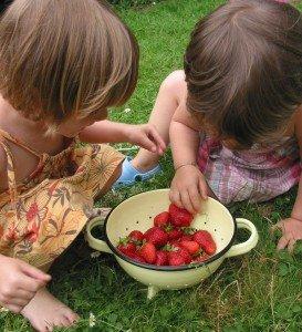 Ma première tarte aux fraises♥ dans A table !!!! 2juin12-003-273x300