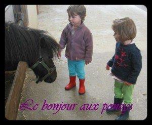 ♥Au poney-Club♥ dans La vie en rose montage18-300x247
