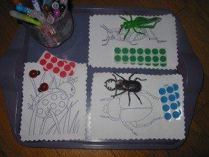 insectes-001-300x225