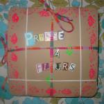 Mes cadres de fleurs séchées dans Déco pour les filles 13aout12Presseàfleurs-0141-150x150