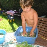 il fait chaud : Et si on lavait la salade  ? dans Apprendre en s'amusant 17aout12galetshistoures-008-150x150