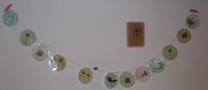 guiralndes-fleurs-séchées-005-300x131 dans Déco pour les filles