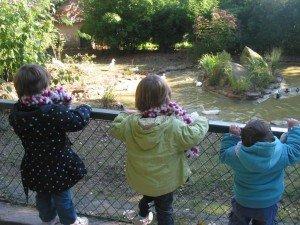 Au Parc du Thabor à Rennes dans La vie en rose 29octobre12-007-300x225