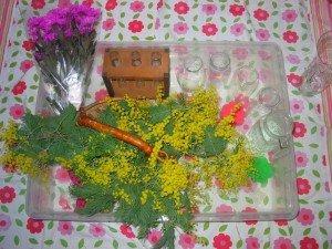 fleurs-002-300x225 dans Aimer et découvrir la nature