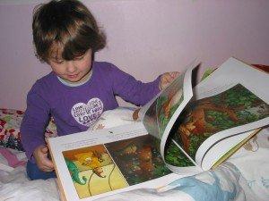 livres-ponti-001-300x225 dans Apprendre en s'amusant