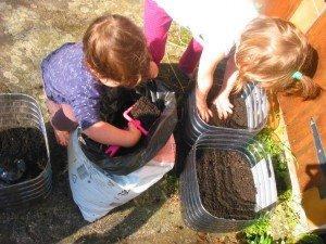 Jardinage dans Aimer et découvrir la nature mont28-300x225