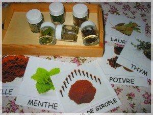 Atelier olfactif pour jeunes enfants dans Apprendre en s'amusant mont15-300x225