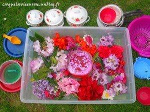 Bac sensoriel Floral dans Activités et Boites sensorielles montage5-300x225
