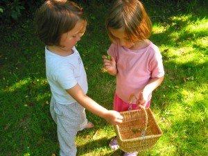 Comment s'amuser avec des mini-pommes ? dans Aimer et découvrir la nature montage41-300x225
