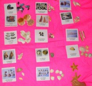 cartes-n3-300x279