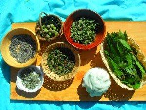 Pâte blanche et Herbes aromatiques dans Activités et Boites sensorielles mont15-300x225