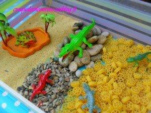 La Reptile-Box dans Activités et Boites sensorielles mont19-300x225