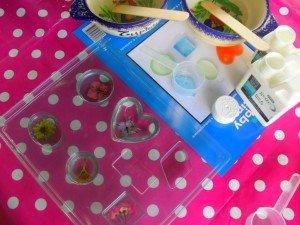 Test Résine Cristal avec inclusion de fleurs séchées ou d'insectes dans Test en résine mont46-300x225
