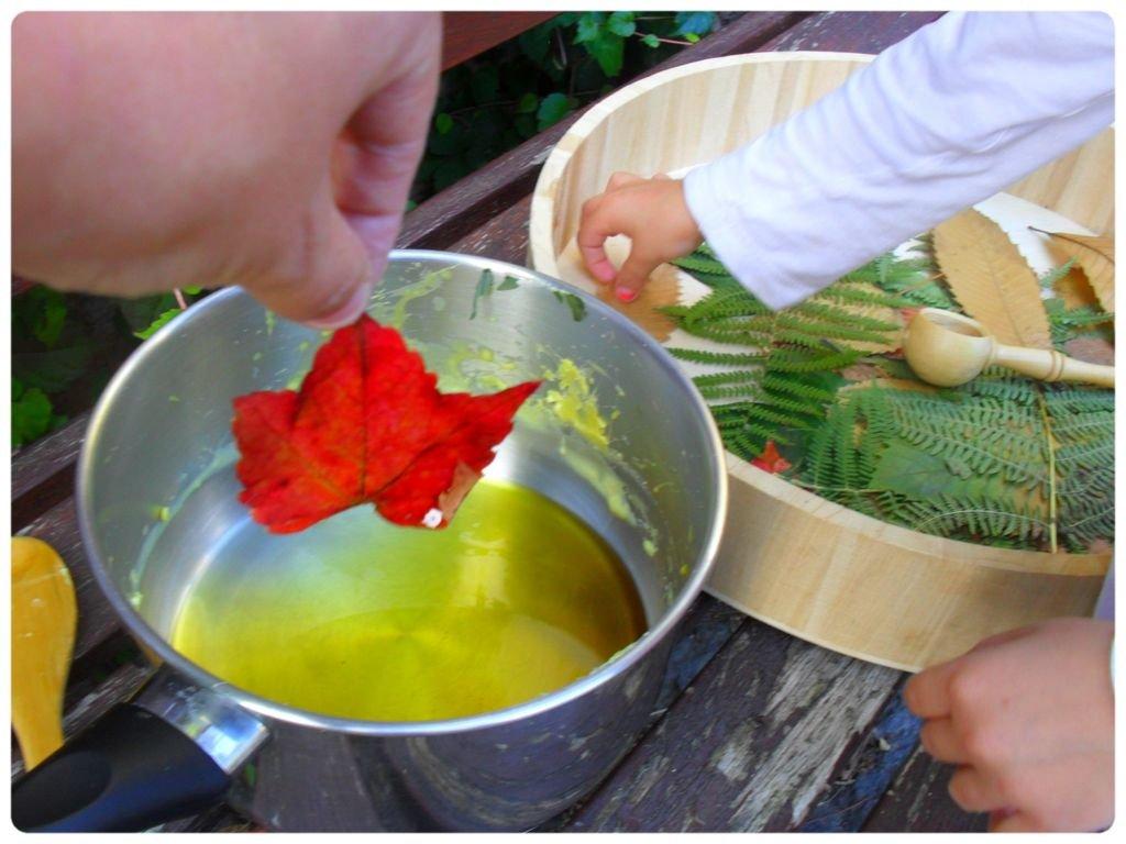 Des feuilles d automne parfum es la cire d abeille for Amaryllis ne fait que des feuilles