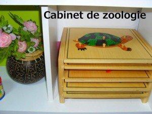 Cabinet de zoologie (Montessori) dans Aimer et découvrir la nature mont12-300x225